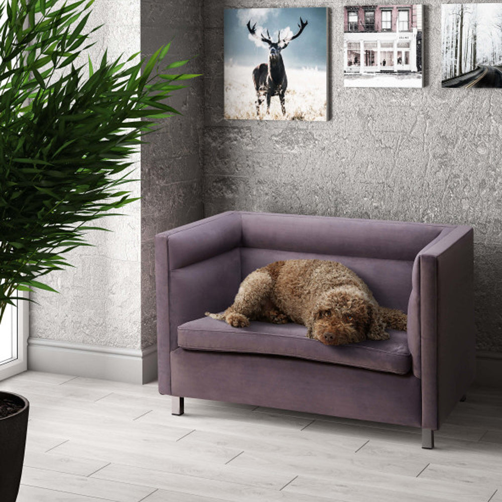 Grey Modern Pet Sofa