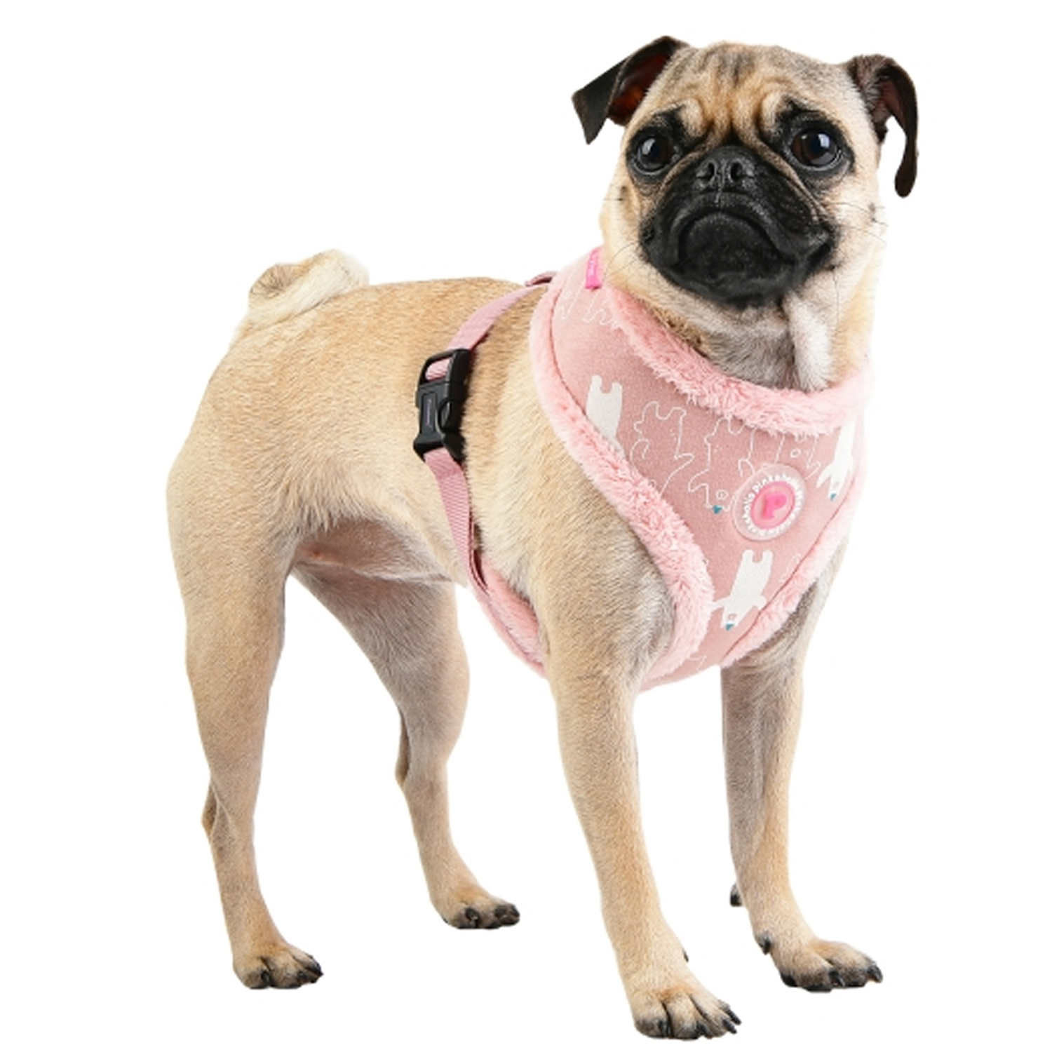 Ursa Dog Harness + Leash Set