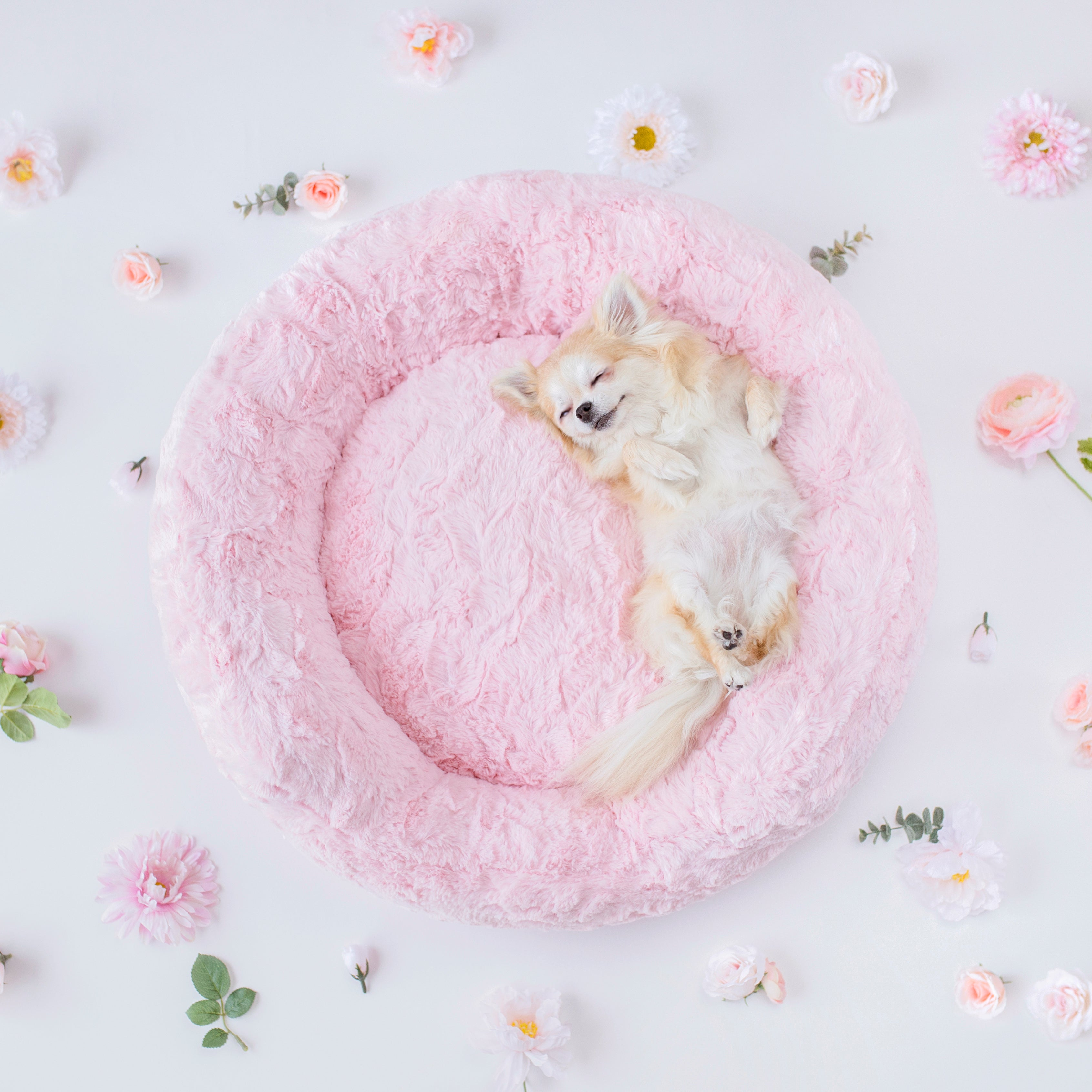 Amour Dog Bed: Pink