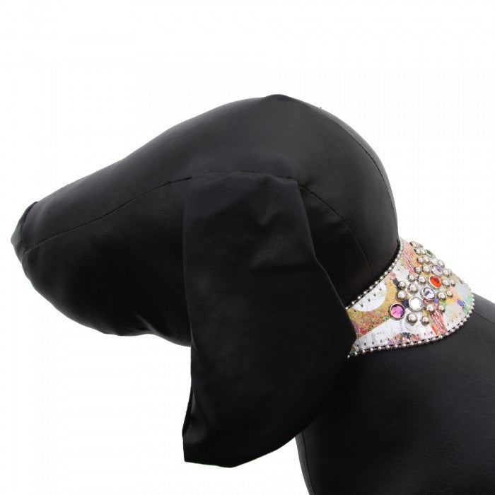 B.B Simon Dog Collar: Arya
