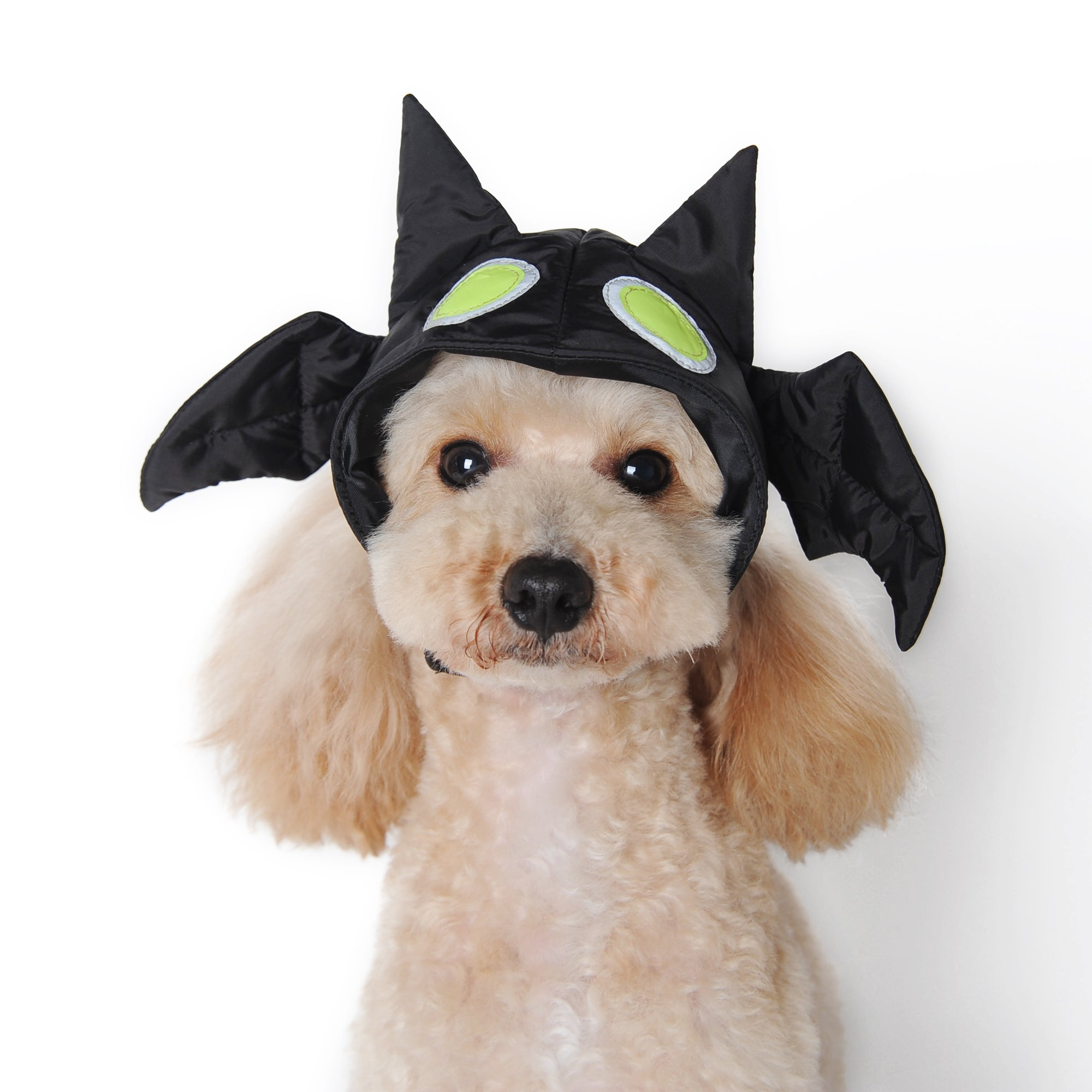 Bat Dog Hat Costume