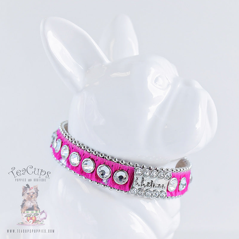 B.B Simon Dog Collar: Margaery