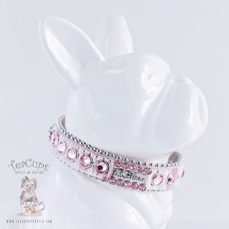 Dog Collar: Myrcella