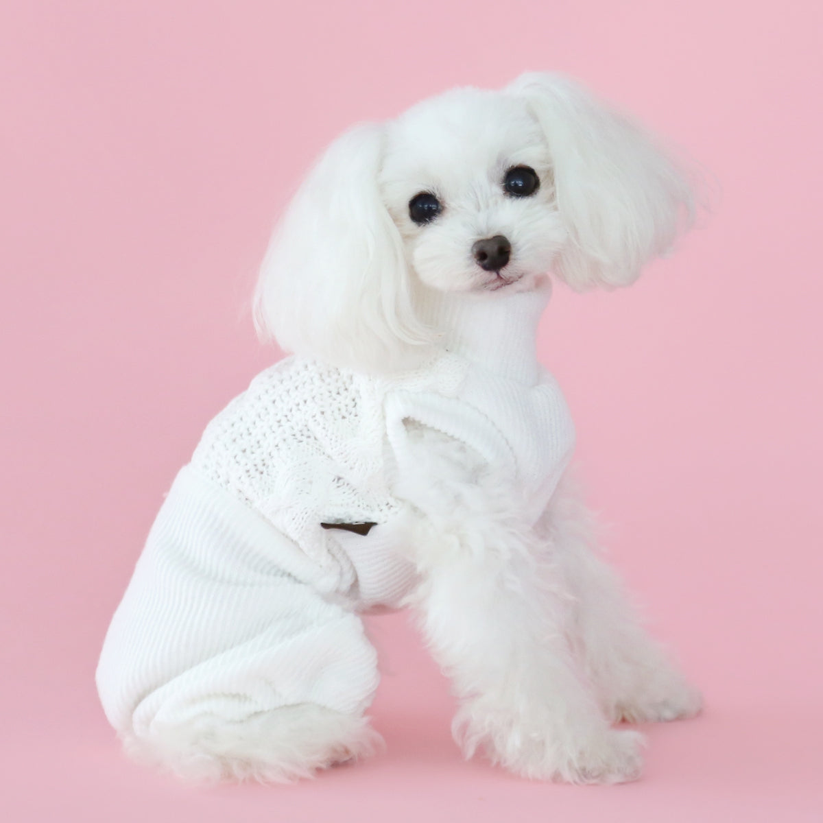 White Knit Dog Onesie
