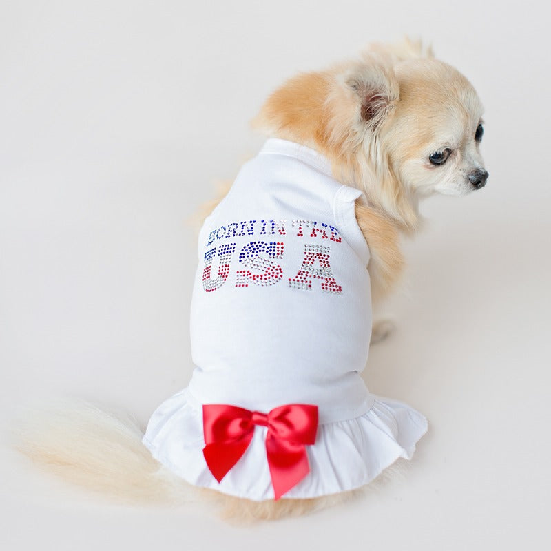Born In The USA Dog Dress