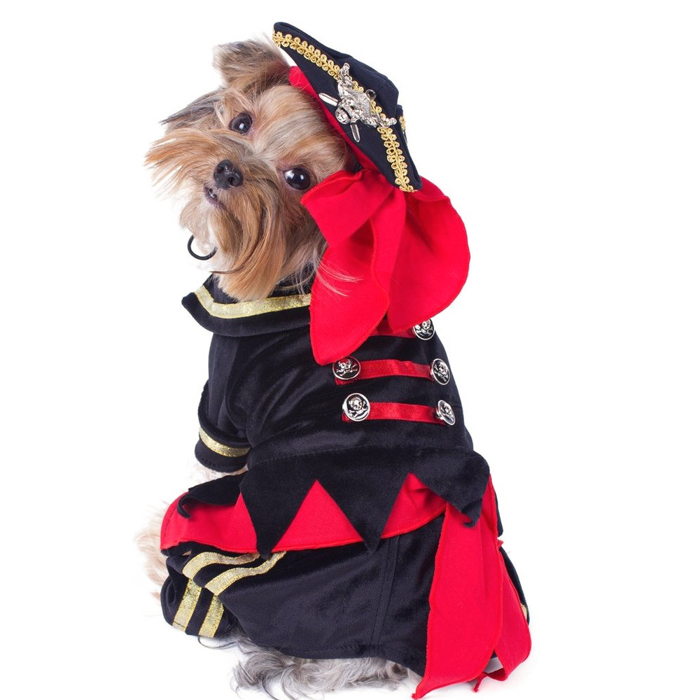 Pirate Dog Costume, Small Dog Halloween Costumes