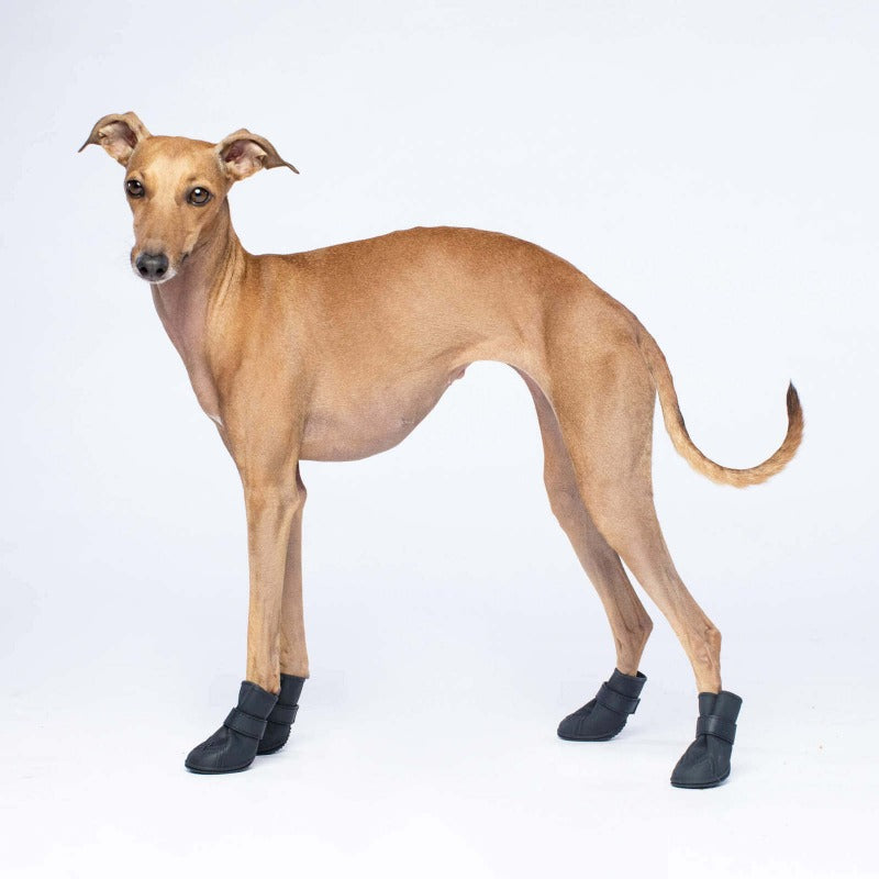 Wellies Dog Boots: Black