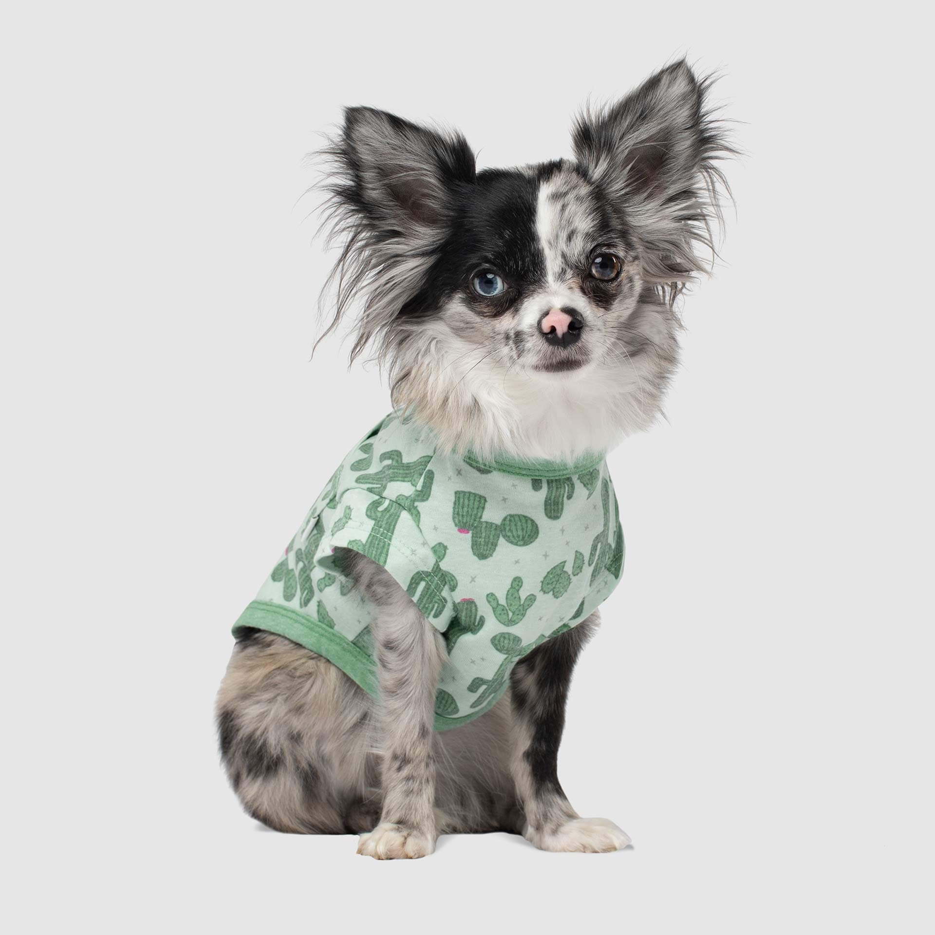 Pet Boutique - Designer Dog Clothes - Canada Pooch Follow Me Dog Tee