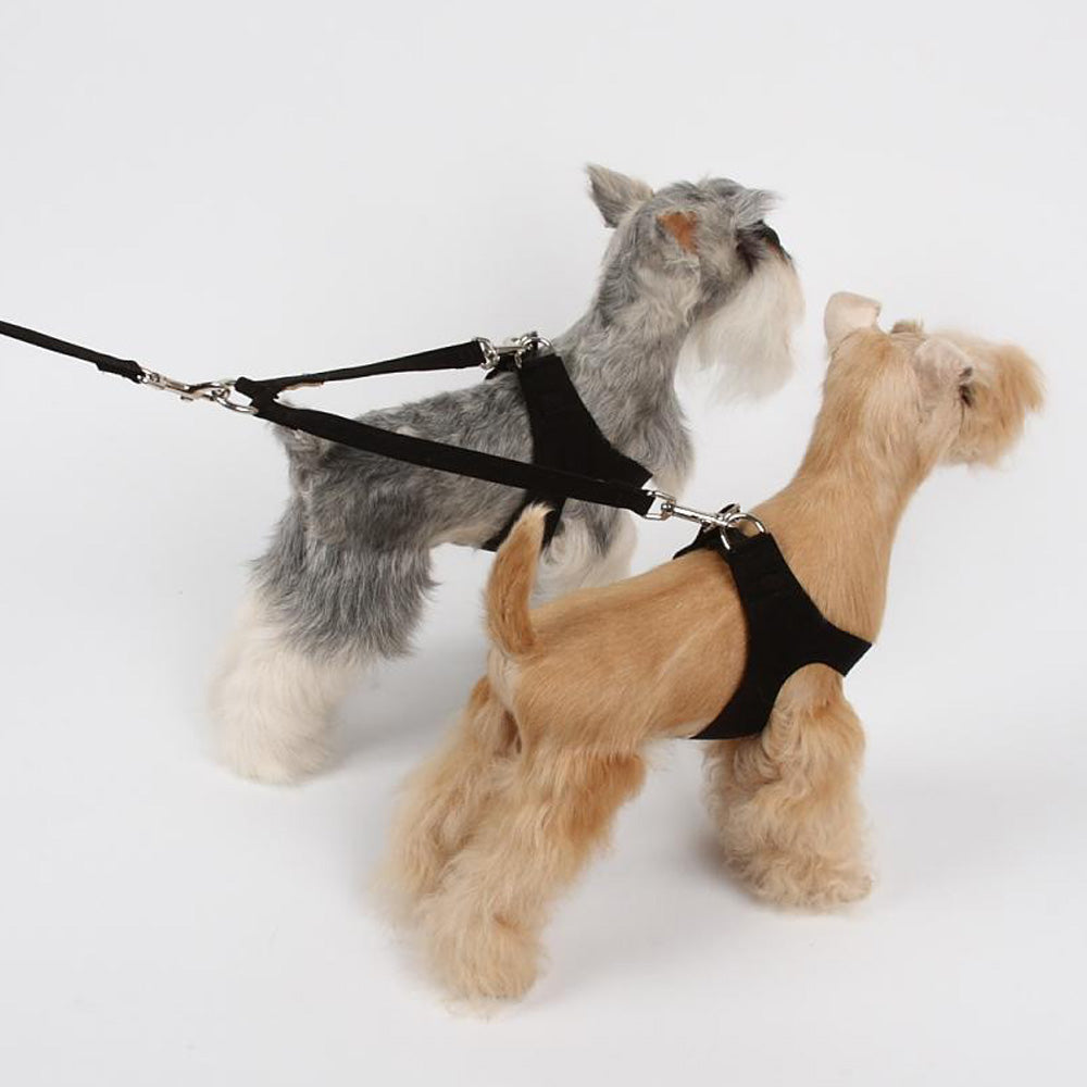 Coupler Dog Leash
