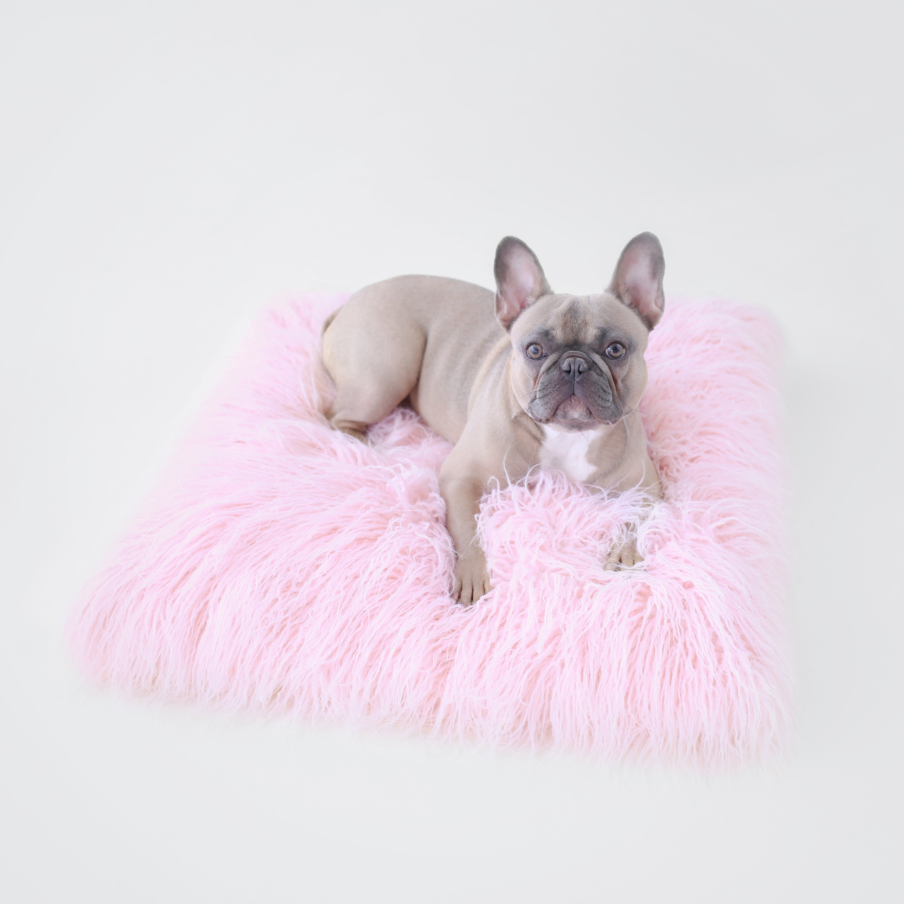Pet Boutique - Dog Beds - Himalayan Yak Dog Mat