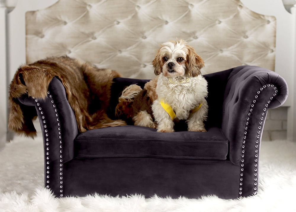 Catherine Pet Sofa: Grey