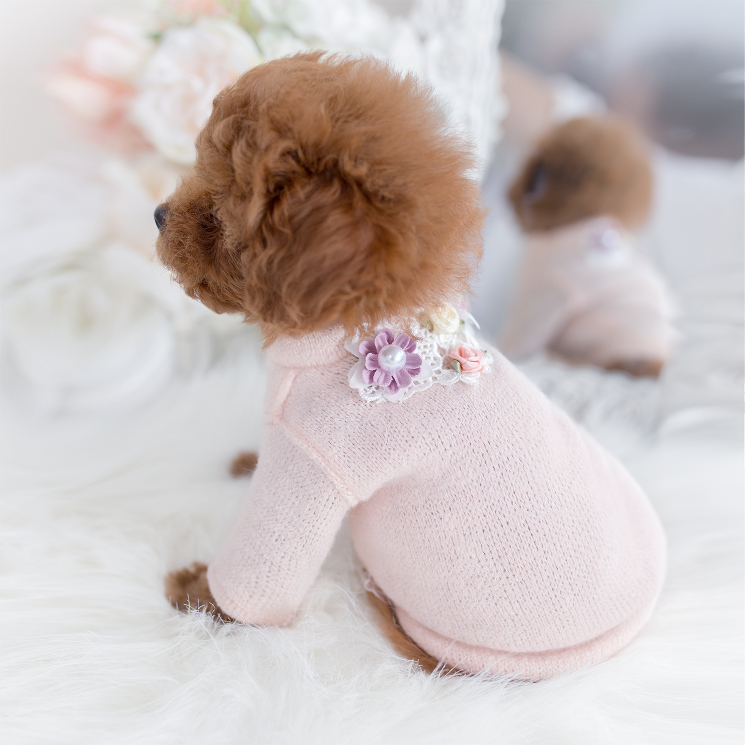 Garden Party Dog Sweater