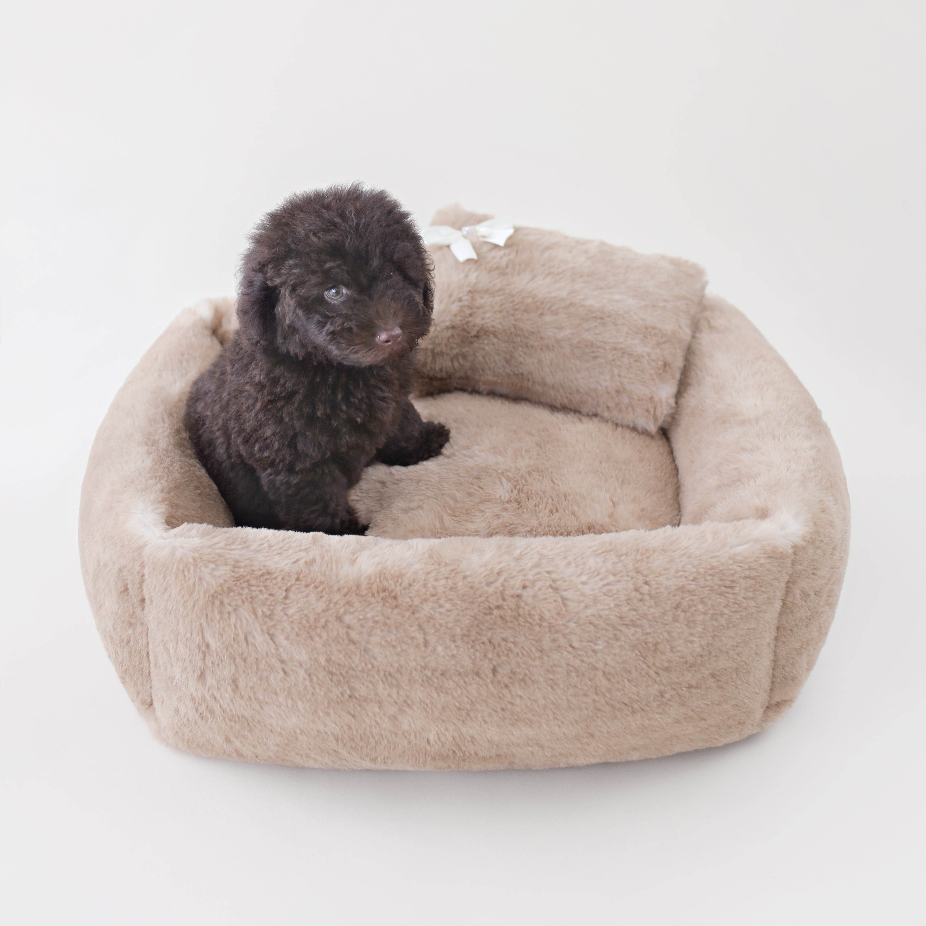 Teddy Fur Dog Bed: Brown