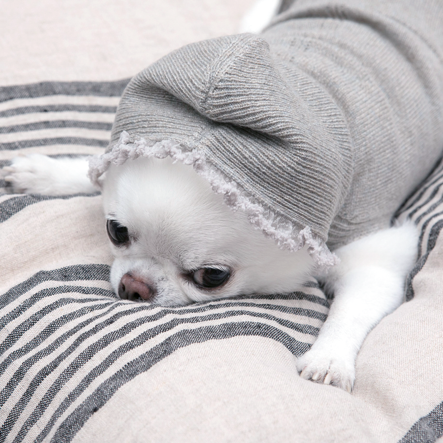 Grey Cashmere Dog Hoodie - TeaCups Puppies And Boutique