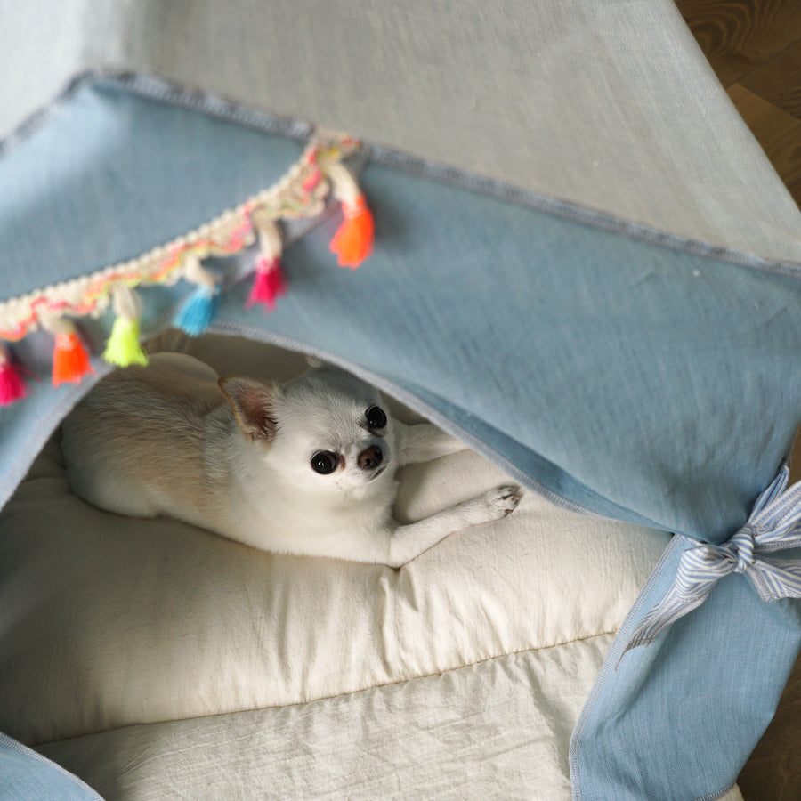 Peekaboo Dog House: Lucky Blue