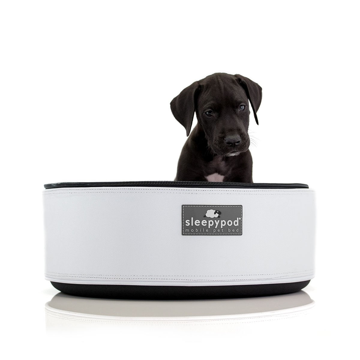 SleepyPod Pet Carrier: White