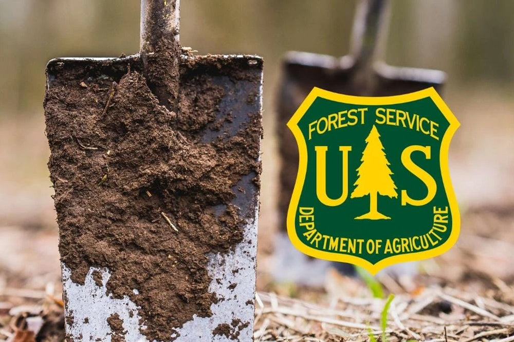 Oxygen Plus Plants 1,000 Trees in United States National Forests