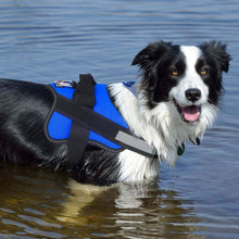 Load image into Gallery viewer, PawBarkSit™ No-Pull Dog Vest Harness
