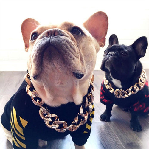 Thick Gold Chain Pets Safety Collar