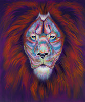 I See You. Original Acrylic lion Painting on canvas.  Bold, vibrant, solid colours portray the King of the Jungle.