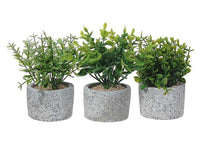 ARTIFICIAL GREENERY IN STONE PLANTER (ASSTD) - BayShoomar