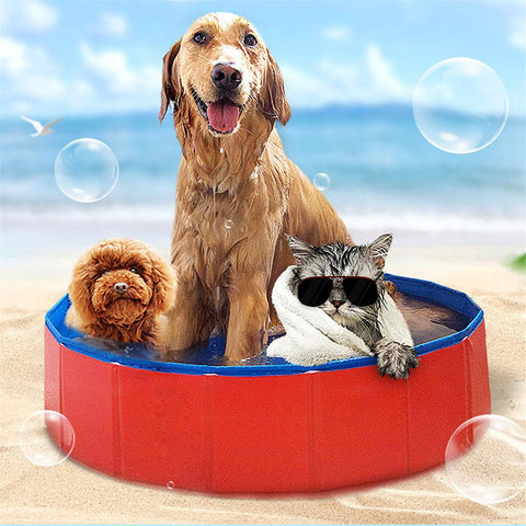 Pet Outdoor Indoor Portable pool