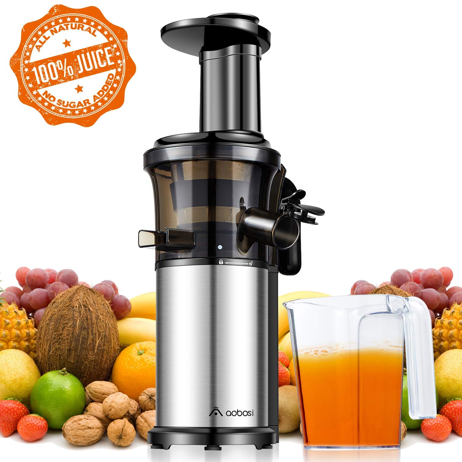 Aobosi Slow Masticating Juicer Extractor Compact