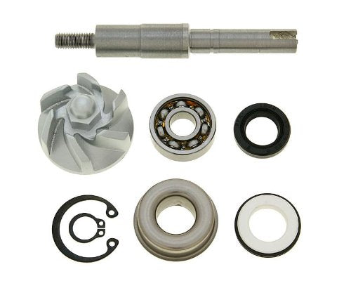 Water Pump Repair Kit - Honda Dylan SES 125 4T JF10