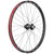 "E*thirteen TRS Race Carbon 29"" Wheels"