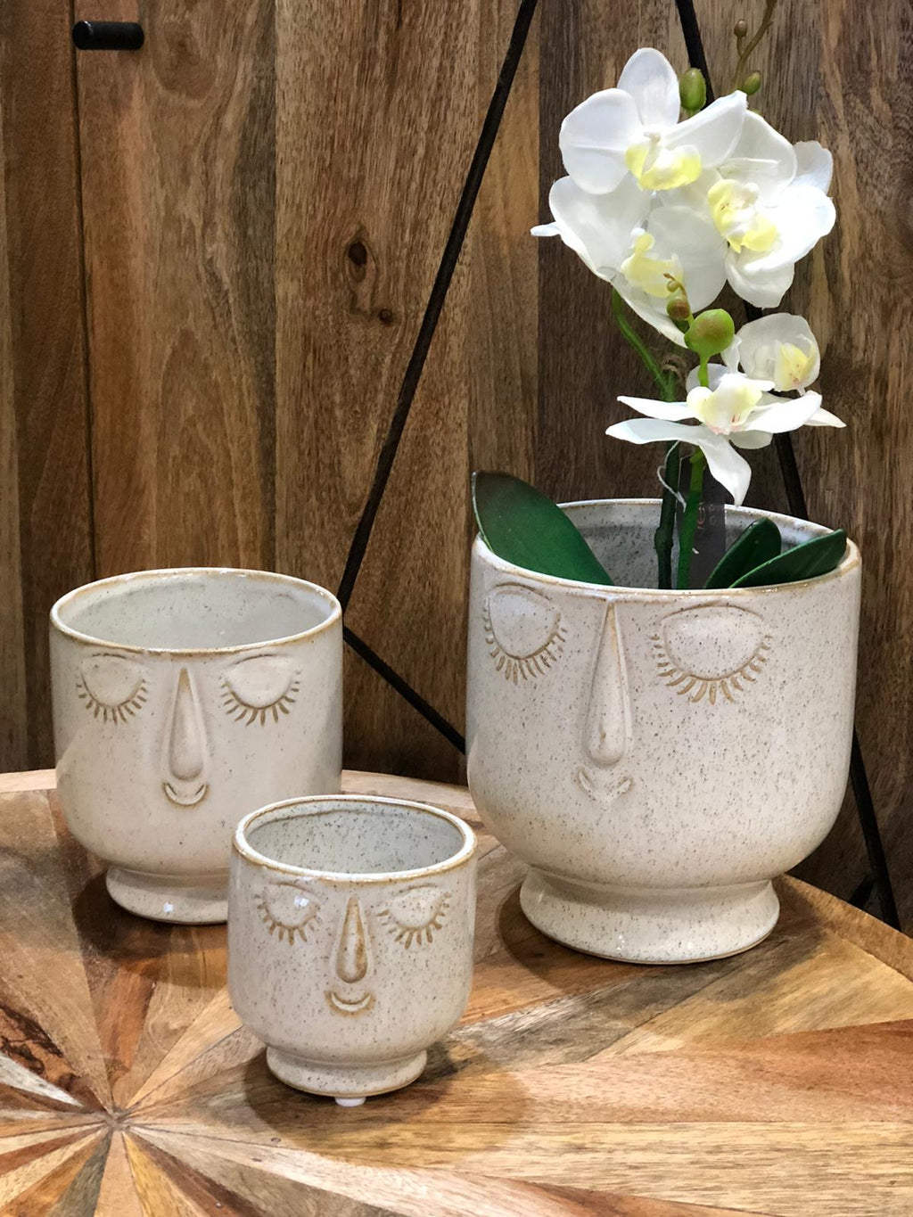 Face planters - Set Of 3