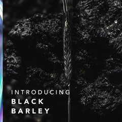 <b>INTRODUCING NEW PATENTED BLACK BARLEY<b>