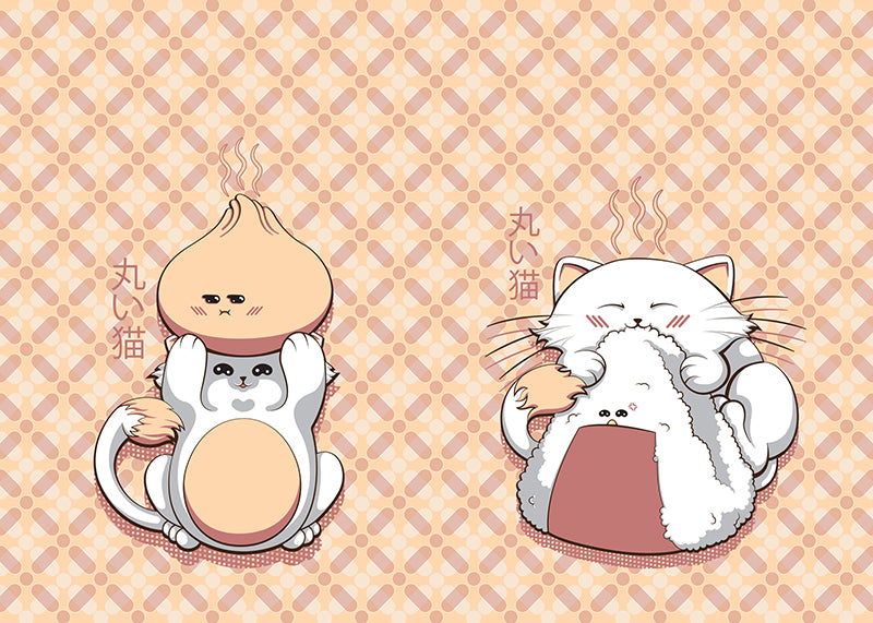 Marui Neko Onigiri and Steamy