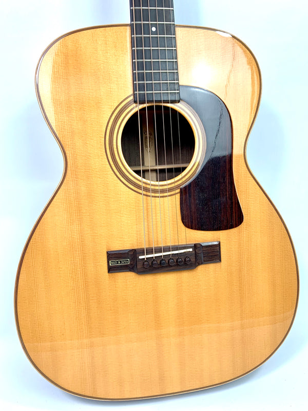 Washburn F-62-SW Prairie Song de 1984