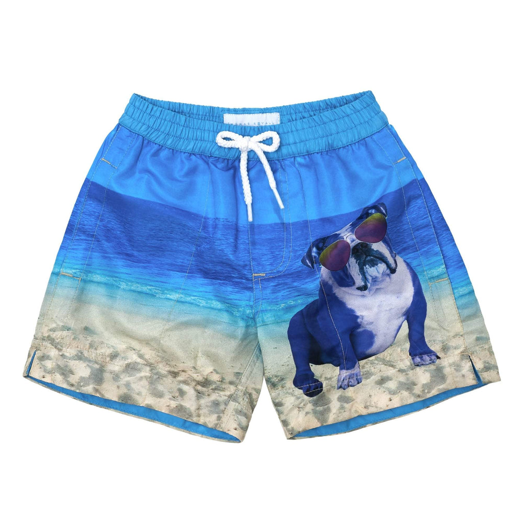 Beach Bulldog' kids shorts showcasing an iconic French dog and beach scene. This 'Luca' style features our signature Thomas Royall blue waistband.