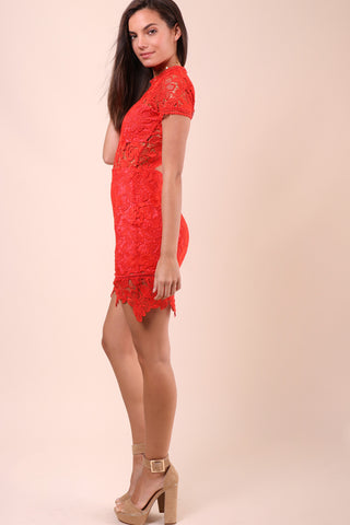 Lovers & Friends Mon Amour Dress