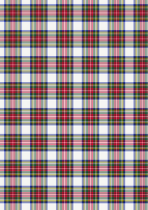 Large Beautiful Mixed Tartan