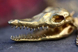 Crocodile Skull Necklace