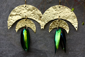 Beetle Large Statement Brass Gold Earrings