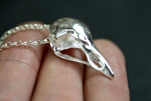 Sterling Silver Small Bird Skull Necklace