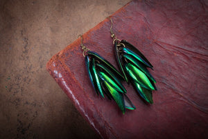 Beetle Shell Earrings