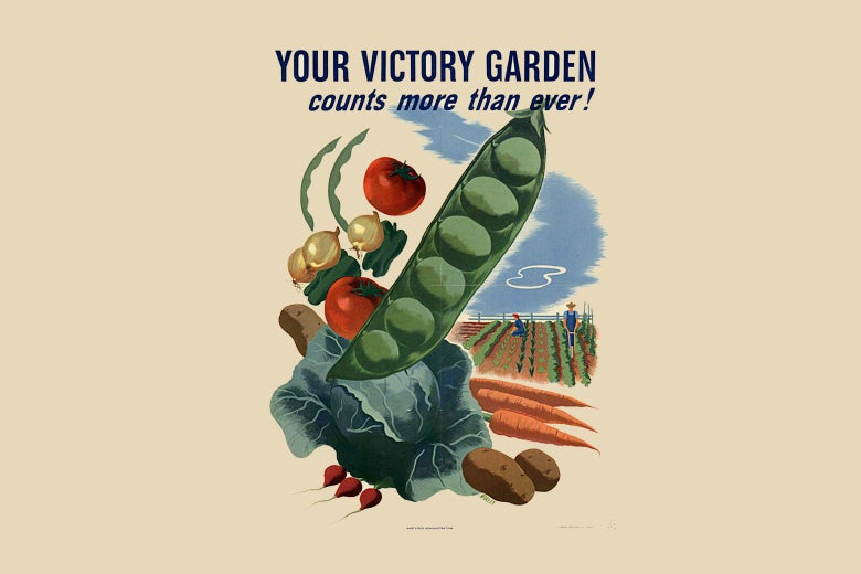 Plant your Victory Garden 2.0