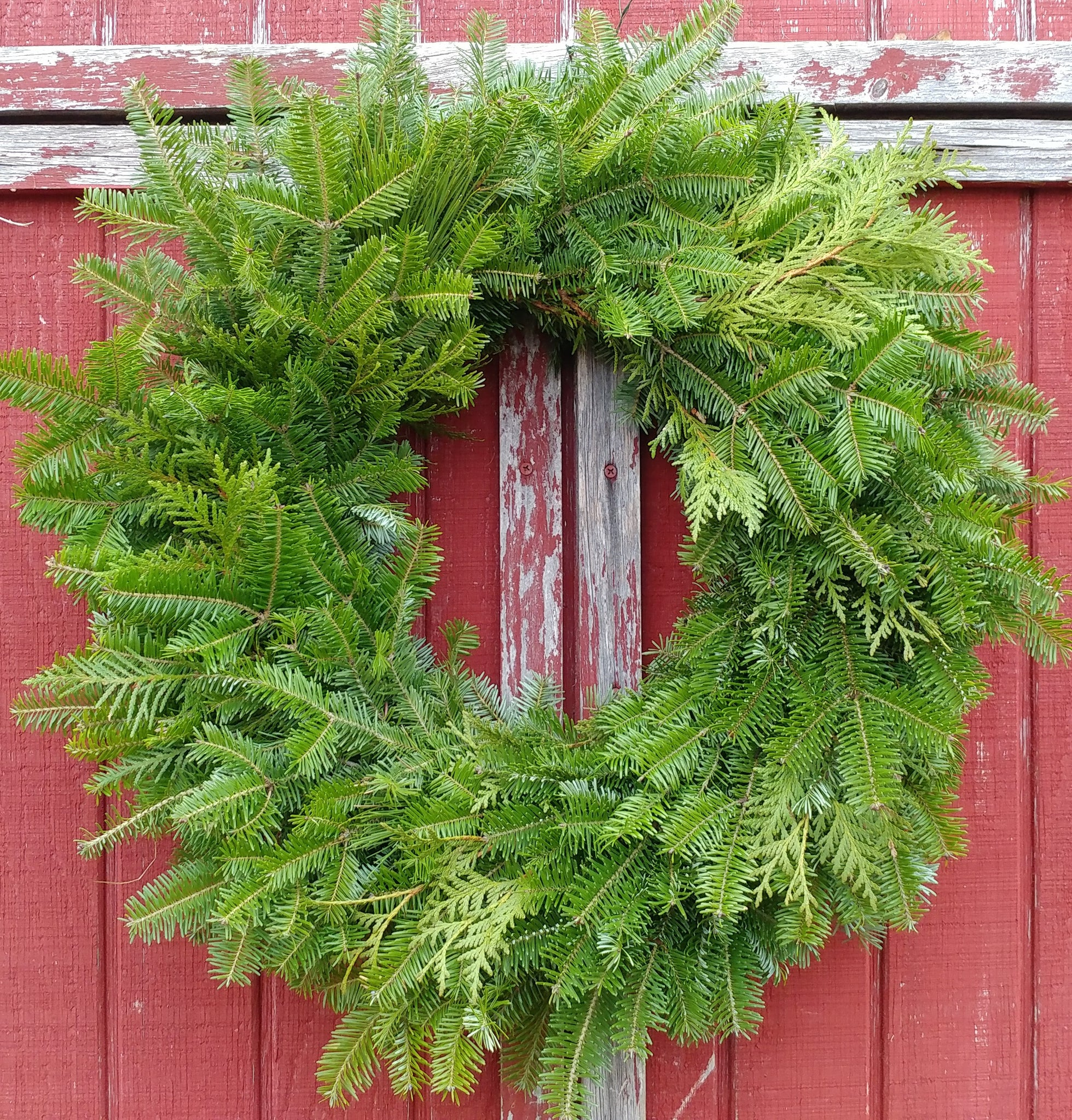Pam's Undecorated  Wreath