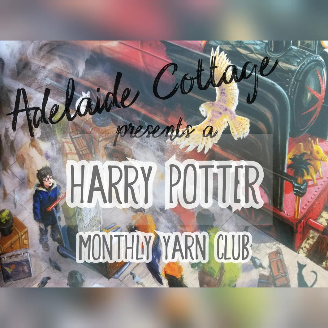 Harry Potter Yarn Club - (DECEMBER Pre-Order) ***SOLD OUT***