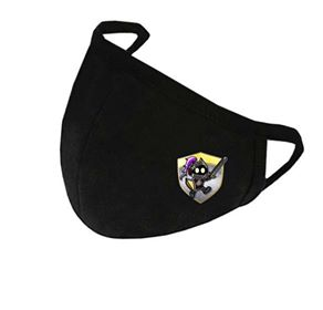 Game Knights Covid Mask | Game Knights MA