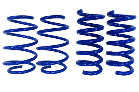 Steeda Mustang GT Drag Springs - Linear (2015-2021)