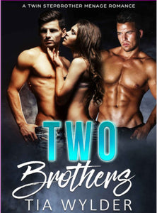 Two Brothers: A Twin Stepbrother Billionaire Romance