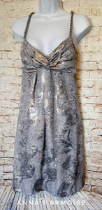 New with Tags Muse Silver Dress Size 6 - Anna's Armoire