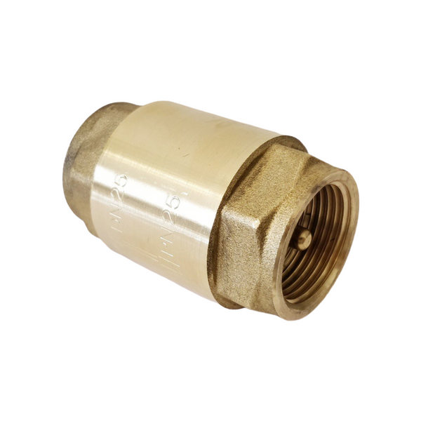 Brass non-return valve with stainless steel plate, 1""