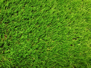 Mary Rose 38mm Artificial Grass