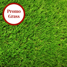 Load image into Gallery viewer, Mary Rose 38mm Artificial Grass